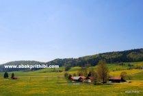Natural beauty of Bavaria, Germany (5)