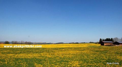 Natural beauty of Bavaria, Germany (6)