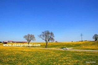 Natural beauty of Bavaria, Germany (8)
