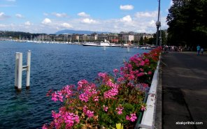 Jardin Anglais, Geneva, Switzerland (1)