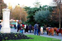 Jardin des Plantes, Toulouse, France (7)