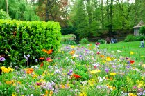 Le Jardin Royal, Toulouse, France (10)