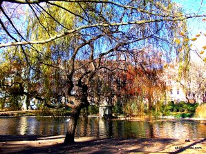 Le Jardin Royal, Toulouse, France (15)