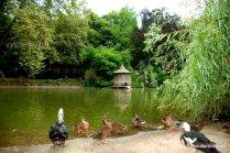 Le Jardin Royal, Toulouse, France (2)
