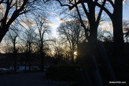 Le Jardin Royal, Toulouse, France (8)