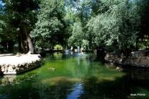 Maria Luisa Park, Seville, Spain (3)