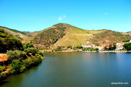 The Douro river, Portugal (14)
