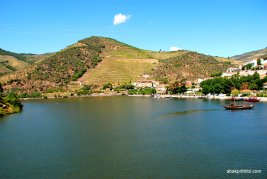 The Douro river, Portugal (17)