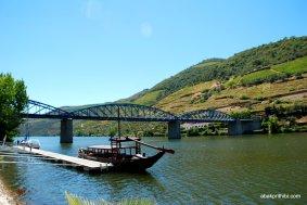 The Douro river, Portugal (18)