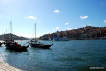 The Douro river, Portugal (8)