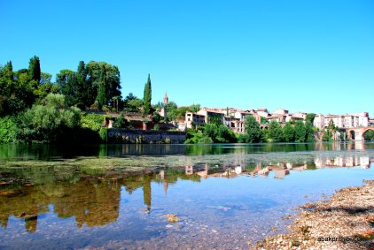 The Tarn river , France (5)