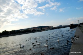 The Vltava river, Czech Republic (10)