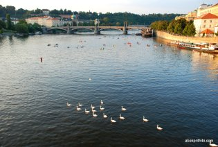 The Vltava river, Czech Republic (21)