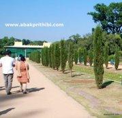 Tippu Sultan's Summer Palace, Mysore, India (5)