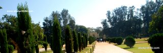 Tippu Sultan's Summer Palace, Mysore, India (8)