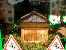 Apiculture in France (2)