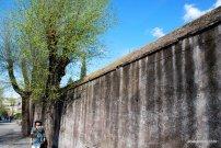 The Palatine Hill, Rome (13)