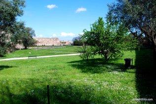 The Palatine Hill, Rome (14)