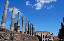 The Palatine Hill, Rome (15)
