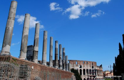 The Palatine Hill, Rome (15)