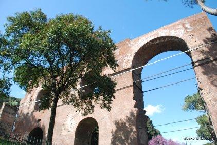 The Palatine Hill, Rome (2)