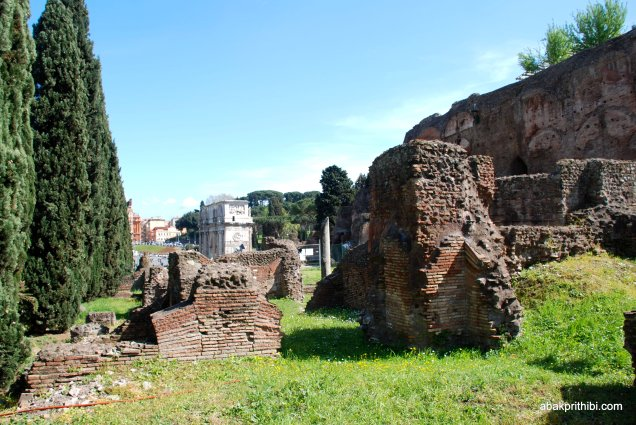 The Palatine Hill, Rome (5)
