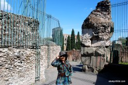 The Palatine Hill, Rome (6)