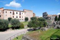 The Palatine Hill, Rome (7)