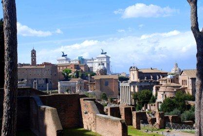 The Palatine Hill, Rome (9)