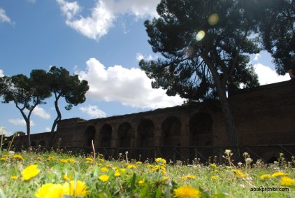 The Palatine Hill, Rome