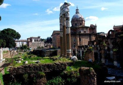 The Roman Forum, Rome, Italy (13)