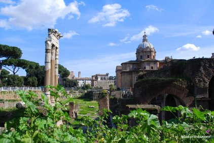 The Roman Forum, Rome, Italy (14)