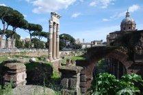 The Roman Forum, Rome, Italy (15)