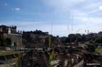 The Roman Forum, Rome, Italy (7)