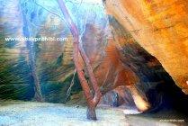Naida Caves, Diu, India (22)