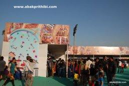 International Kite Festival, Ahmedabad, Gujarat (14)
