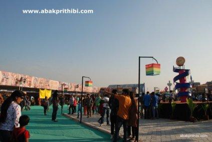 International Kite Festival, Ahmedabad, Gujarat (15)