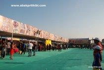International Kite Festival, Ahmedabad, Gujarat (16)