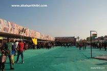 International Kite Festival, Ahmedabad, Gujarat (17)