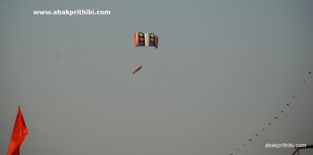 International Kite Festival, Ahmedabad, Gujarat (20)