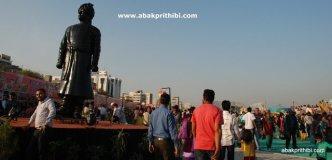International Kite Festival, Ahmedabad, Gujarat (29)