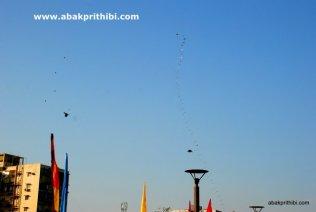International Kite Festival, Ahmedabad, Gujarat (4)