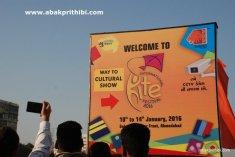 International Kite Festival, Ahmedabad, Gujarat (8)