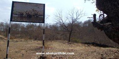Gir Forest, Gujarat, India (1)