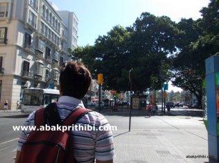 Historic center of Malaga city, Spain (8)