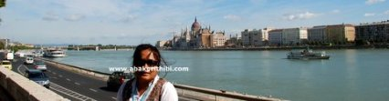 The Hungarian Parliament Building, Budapest (4)