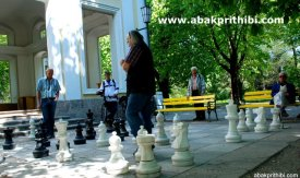 Chess in European City (2)