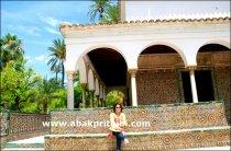 Moorish Tiles pattern of Spain (9)