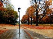 Parc du Cinquantenaire, Brussels, Belgium (1)