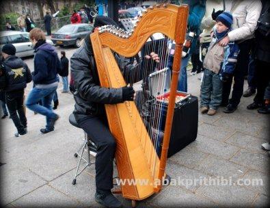 The harp (1)